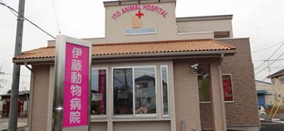 伊藤動物病院 野田病院