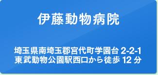 伊藤動物病院